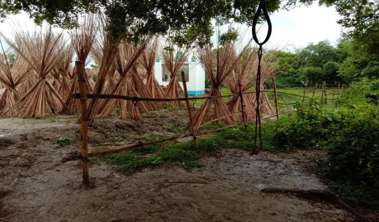 বদর সাহেবের মাজার : একটি এক দিনের অনুসন্ধান রিপোর্ট